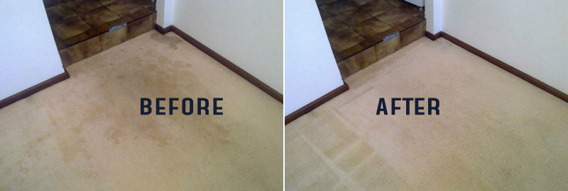 Carpet Cleaning Cowirra