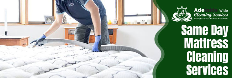 Same Day Mattress Cleaning Old Teal Flat