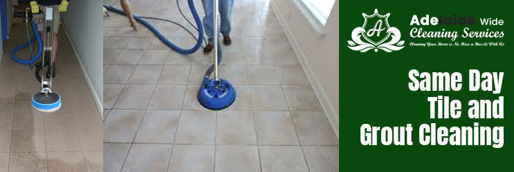 Tile and Grout Cleaning Watchman