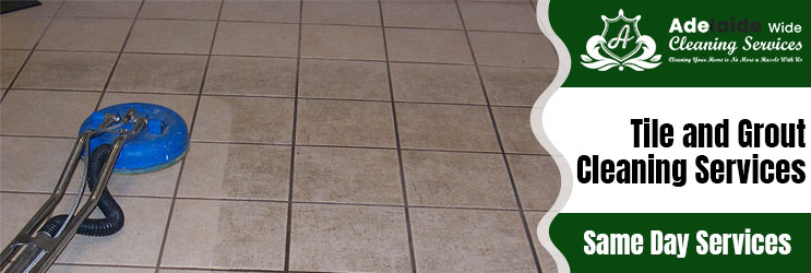 Tile and Grout Cleaning Gillman